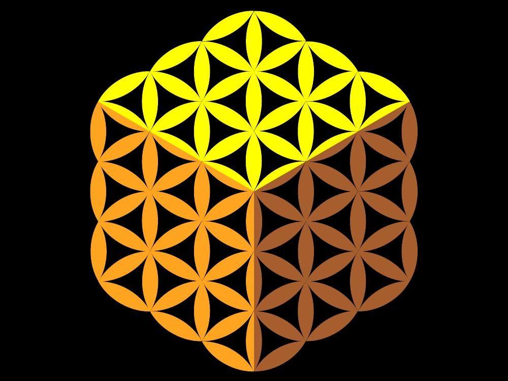 logotipo flor de la vida (1).jpg