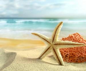 turismo-sol-y-playa